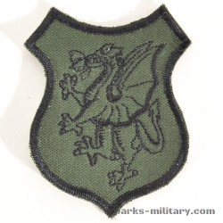 8530th Civilian Support Group (Smoke Dragons) Abzeichen, old German Made