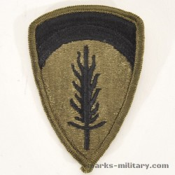 US Army USAREUR Patch Subdued