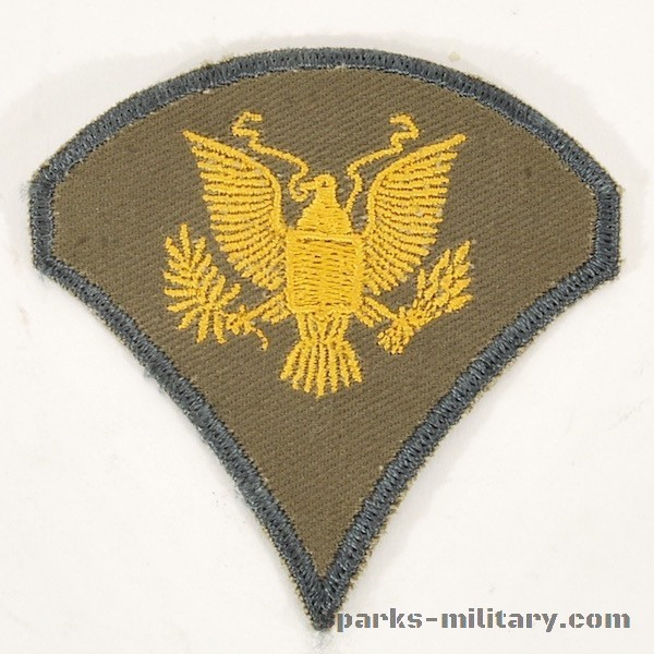 US Army Subdued Cut Edge Rank Specialist