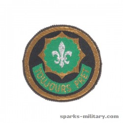 2nd Armored Cavalry Regiment Patch weave