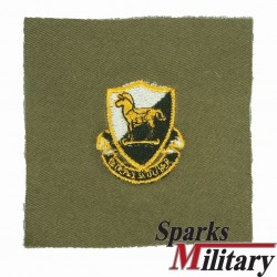 10th Special Forces Unit Crest Color Cloth