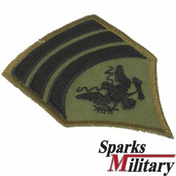 Specialist 7 Chevron Rank