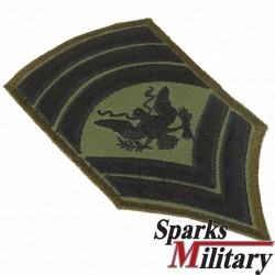 US Army Specialist 9 or SPEC 9, E9 Chevron Rank Insignia