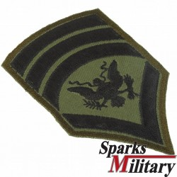 Specialist 8 Chevron rank