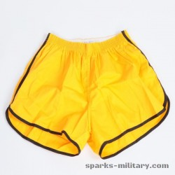 US Army Fitness Shorts, General Purpose