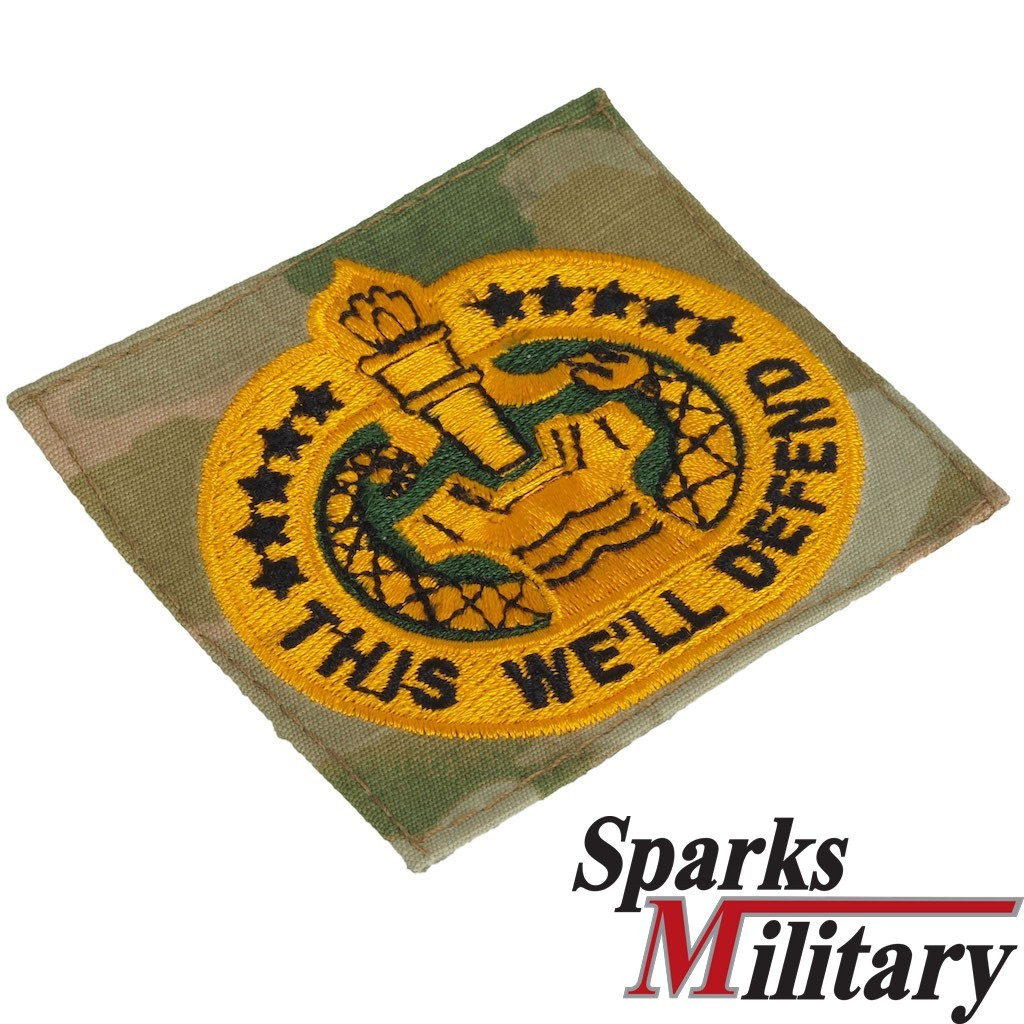 US Army Patch This We'll Defend Qualification Badge OCP Scorpion Drill Instructor