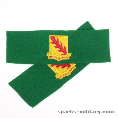 Leadership Tab 1st Battalion 32nd Armor