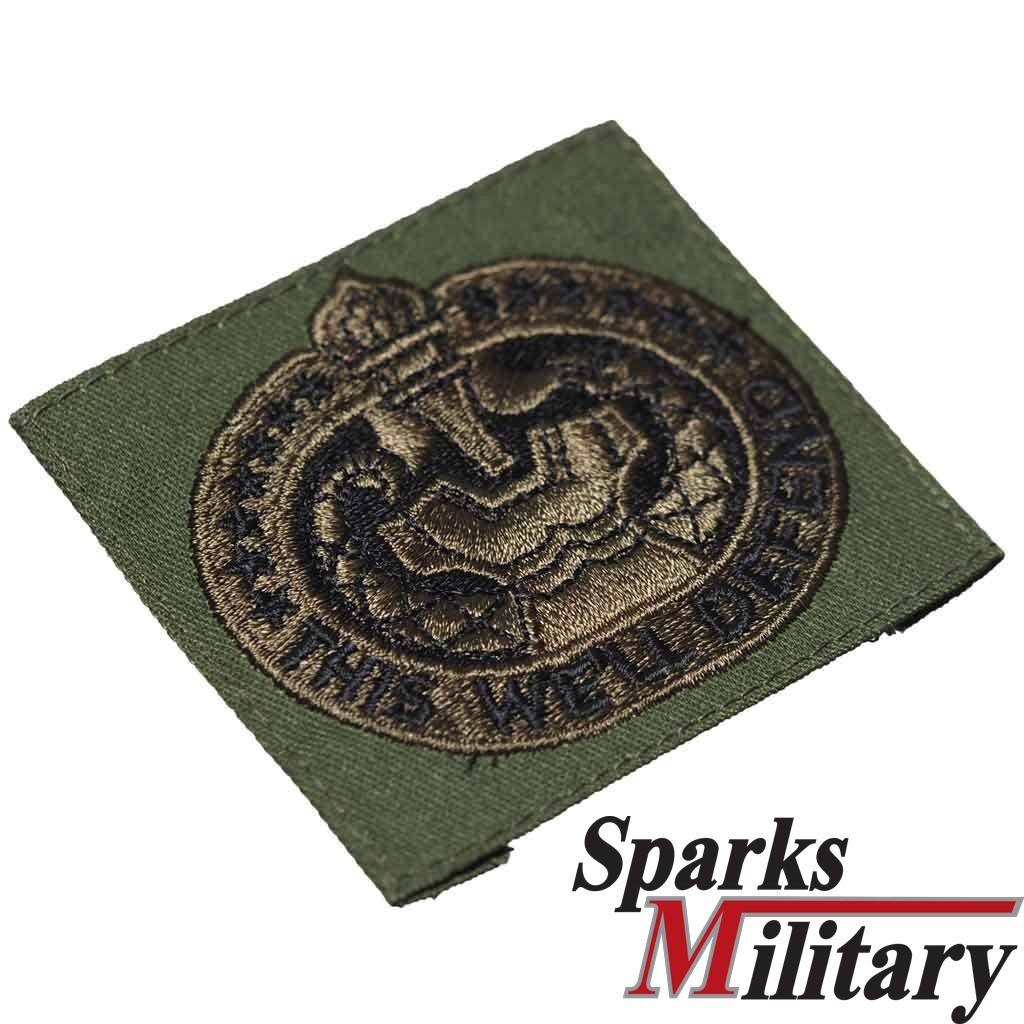 OD green This We'll Defend sew on qualification pocket patch